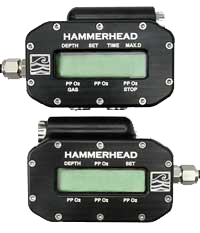 hammerheads_01